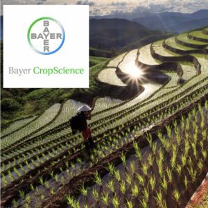 Bayer Crop Science Image