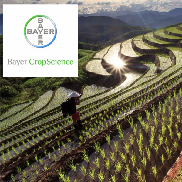 Bayer Crop Science Compliance